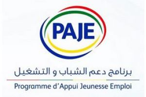 logo Programme d'Appui Jeunesse Emploi (Youth and employment support Program )
